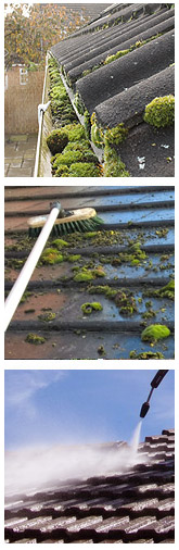 J.R. Roof Cleaning West Byfleet roof moss removal repairs & coating J R Cleaning