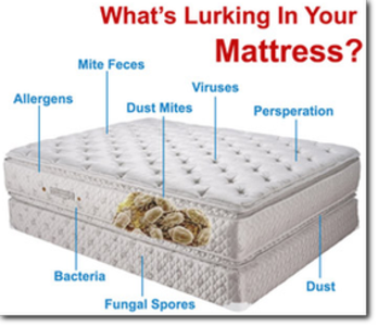 Mattress cleaning services new J R Cleaning