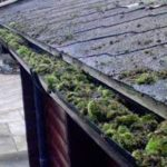 Gutter cleaning Ashford J R Cleaning