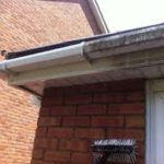 Gutter cleaning Stelling Minnis J R Cleaning