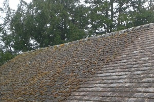 Roof repairs Chelmsfords